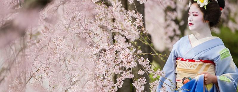 photo : http://www.japanphotoguide.com/event/2015-japan-cherry-blossom-photography-tour/