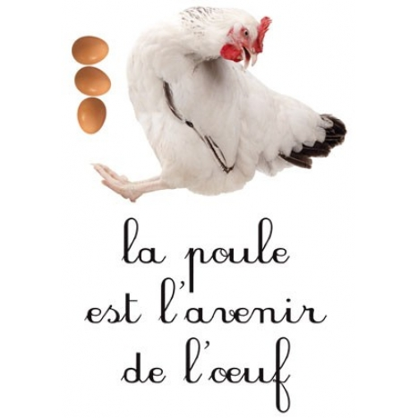 http://www.wallsweethome.fr/fr/stickers-muraux/stickers-citation/sticker-citation-humour-cuisine/