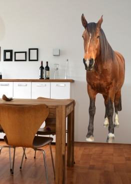 Adhésif géant de cheval http://www.wallsweethome.fr/fr/stickers-muraux/stickers-animaux/stickers-geant-cheval/