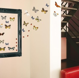 Adhésif muraux papillons, décoration murale http://www.wallsweethome.fr/fr/stickers-muraux/stickers-animaux/stickers-animaux-libellules-papillons-coccinelles/