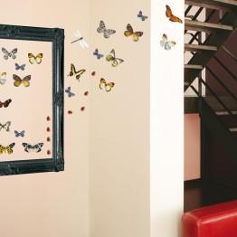 Adhésif muraux papillons, décoration murale http://www.wallsweethome.fr/fr/stickers-muraux/stickers-animaux/stickers-animaux-libellules-papillons-coccinelles/