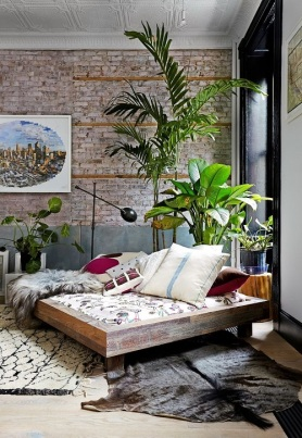 interior_plants
