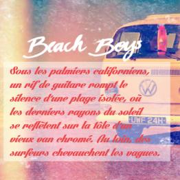 Beach boys : produits plus masculins